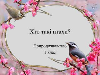 Хто такі птахи?