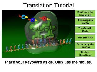 Translation Tutorial