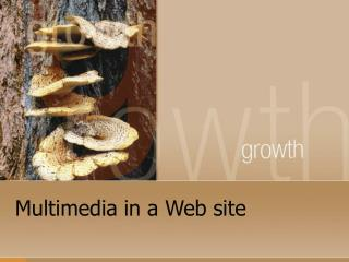Multimedia in a Web site