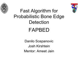 Fast Algorithm for  Probabilistic Bone Edge  Detection