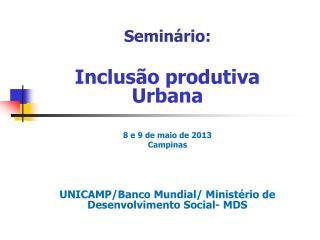 Seminário: Inclusão produtiva Urbana 8 e 9 de maio de 2013 Campinas