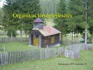 Organikus t�rs�gfejleszt�s
