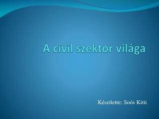 A civil szektor világa
