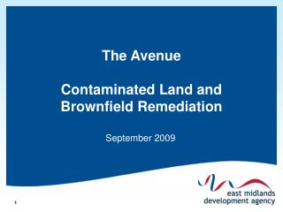 The Avenue Contaminated Land and Brownfield Remediation