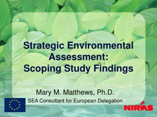 Strategic Environmental Assessment: Scoping Study Findings