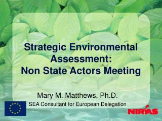 Strategic Environmental Assessment: Non State Actors Meeting