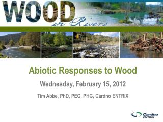 Abiotic  Responses to Wood Wednesday, February 15, 2012 Tim Abbe, PhD, PEG, PHG,  Cardno  ENTRIX