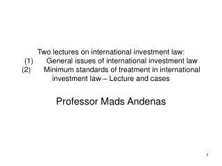 Professor Mads Andenas