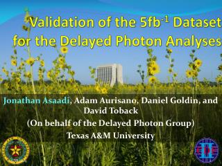 Validation of the 5fb -1  Dataset for the Delayed Photon Analyses
