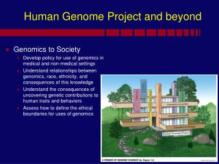 Human Genome Project and beyond