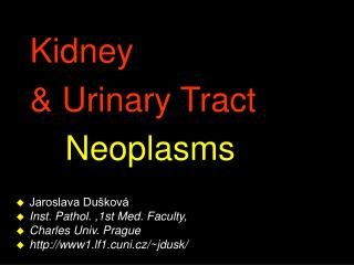 Kidney  & Urinary Tract 			 Neoplasms