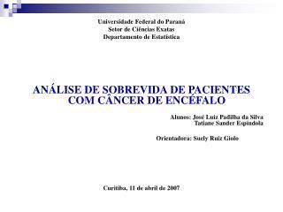 Universidade Federal do Paraná Setor de Ciências Exatas Departamento de Estatística