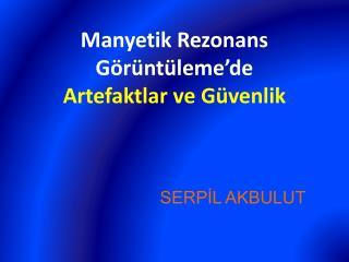 SERPİL AKBULUT