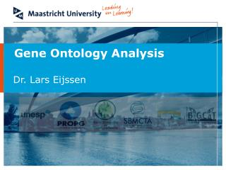 Gene  Ontology Analysis