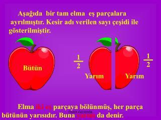 Aşağıda  bir tam elma  eş parçalara      ayrılmıştır. Kesir adı verilen sayı çeşidi ile