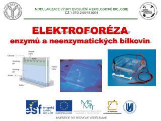 MODULARIZACE VÝUKY EVOLUČNÍ A EKOLOGICKÉ BIOLOGIE CZ.1.07/2.2.00/15.0204