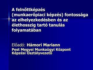 Előadó:  Hámori Mariann Pest Megyei Munkaügyi Központ Képzési Osztályvezető