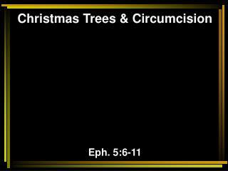 Christmas Trees & Circumcision Eph. 5:6-11