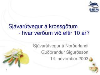Sjávarútvegur á krossgötum - hvar verðum við eftir 10 ár?