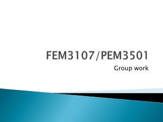 FEM3107/PEM3501