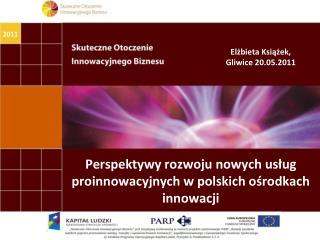Perspektywy rozwoju nowych usług proinnowacyjnych w polskich ośrodkach innowacji