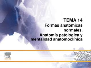 TEMA 14 Formas anatómicas normales .  Anatomía patológica y mentalidad anatomoclínica