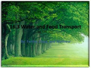 16.3 Water and Food Transport pg. 545- 550