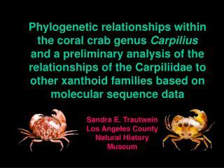 Sandra E. Trautwein Los Angeles County Natural History Museum