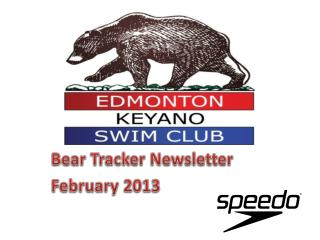 Bear Tracker Newsletter February 2013