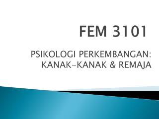 FEM 3101