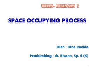 Oleh : Dina Imelda Pembimbing  : dr. Risono, Sp. S (K)