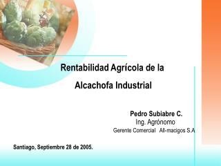 Rentabilidad Agr í cola de la  Alcachofa Industrial