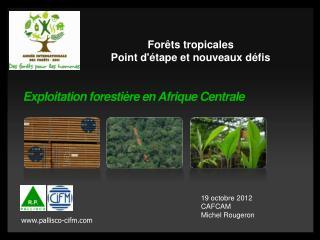 Exploitation forestière en Afrique Centrale