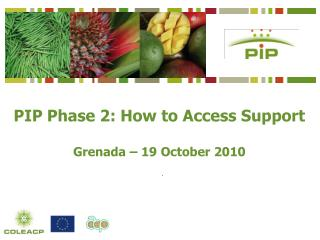 PIP Phase 2: How to Access Support  Grenada   19 October 2010