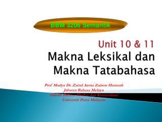 Unit 10 & 11 Makna Leksikal dan Makna Tatabahasa