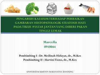 Marcella 0910044 P embimbing I :  Dr. Meilinah Hidayat,  dr. ,  M.Kes