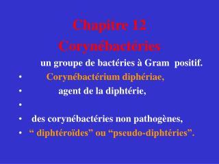 Chapitre 12  Corynébactéries          un groupe de bactéries à Gram  positif.