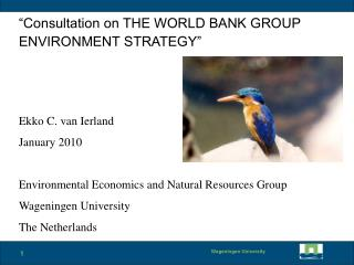 """Consultation on THE WORLD BANK GROUP ENVIRONMENT STRATEGY"" Ekko C. van Ierland January 2010"