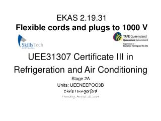 EKAS 2.19.31 Flexible cords and plugs to 1000 V