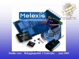 Studie voor    Beleggingsclub 't Galerijke      juni 2002