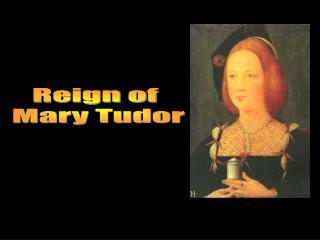 Reign of  Mary Tudor