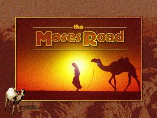 Exodus 15.22-25 / 16.1-6