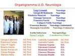 U.O. Neurologia  Attivit  anno 2006