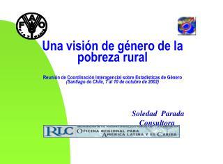 Soledad  Parada Consultora