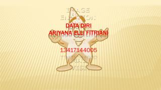 Data  Diri Ariyana  Elli  Fitriani