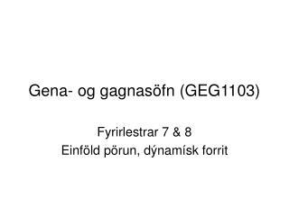 Gena- og gagnas öfn (GEG1103)