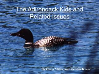 The Adirondack Kids  and Related Issues