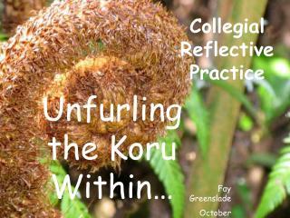 Collegial Reflective Practice