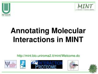 Annotating Molecular Interactions in MINT