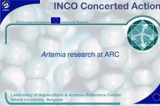 Artemia  research at ARC